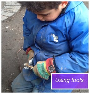 Forest school tools